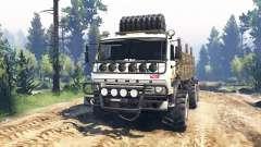 KamAZ-43114 v3.0 for Spin Tires
