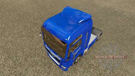 Nettle Transports skin for MAN truck for Euro Truck Simulator 2