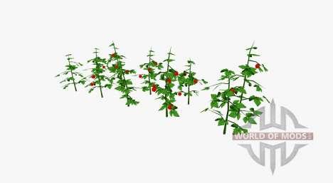 Tomato bushes for Farming Simulator 2017
