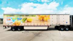 Skin Dole on a curtain semi-trailer for American Truck Simulator