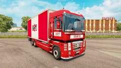 Skin GNT for tractor Renault Magnum tandem