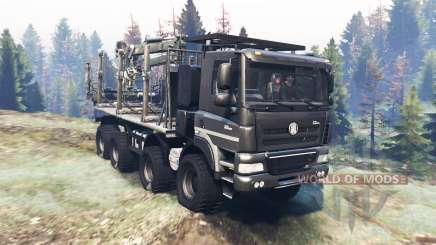 Tatra Phoenix T 158 8x8 v7.0 for Spin Tires