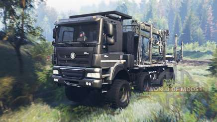 Tatra Phoenix T 158 8x8 v8.0 for Spin Tires