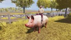 Pig v2.0 for Farming Simulator 2013