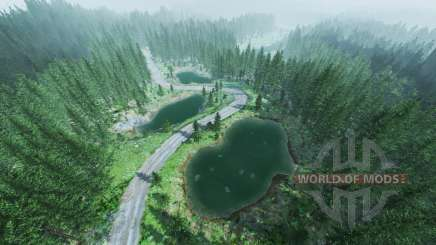 Rally forest v1.5 for BeamNG Drive