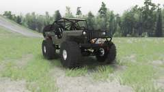 Jeep Willys MB custom for Spin Tires