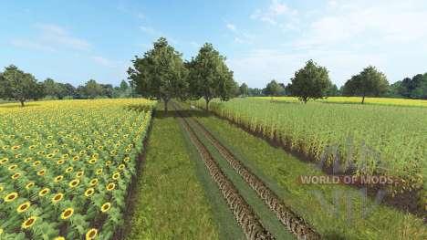 Borkowice for Farming Simulator 2017