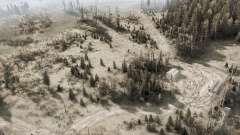 Ryazan swamp