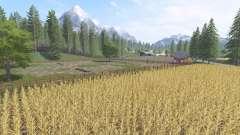 The Italian Farm v1.1 for Farming Simulator 2017