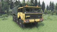 Tatra T813 TP 8x8 1967 v1.2 for Spin Tires