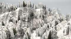 Snow Ridge Logging for MudRunner