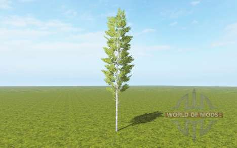 Cut down birch for Farming Simulator 2017
