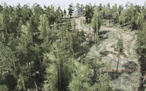Forest Hard for Spintires MudRunner