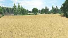 Un Petit Coin de Belgique v2.1 for Farming Simulator 2017