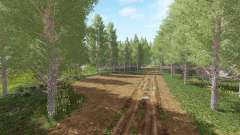 Forestry Land v1.1 for Farming Simulator 2017