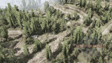Deciduous forest for MudRunner