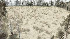 The Forest Marsh for MudRunner