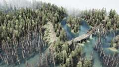 Forest story 2 for MudRunner