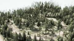 Forest road for MudRunner