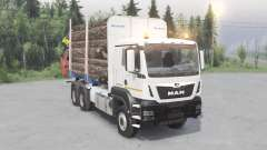 MAN TGS 33.480 for Spin Tires