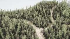 Sirgotcha National Forest for MudRunner