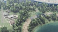 Forest lake for Spin Tires