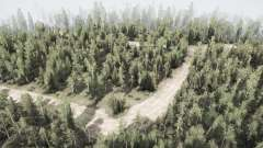 Forest v2.0 for MudRunner