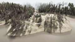Forest ridges for MudRunner