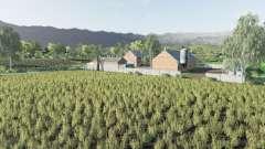Normala Wies v2.0 for Farming Simulator 2017