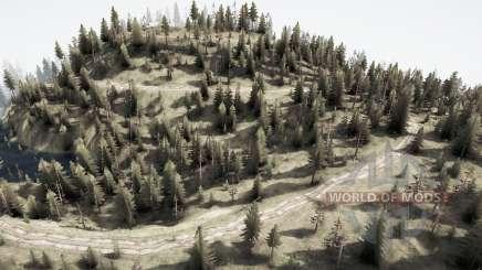 Forest - save EA v2.0 for MudRunner