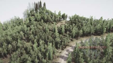 Birch grove for Spintires MudRunner