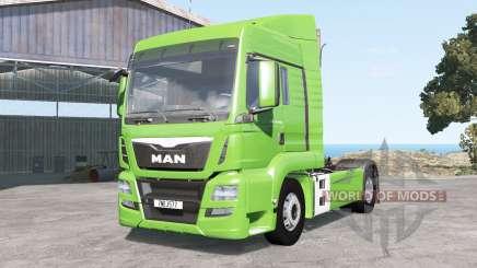 MAN TGS 18.480 for BeamNG Drive
