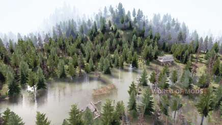 Taiga forest for MudRunner