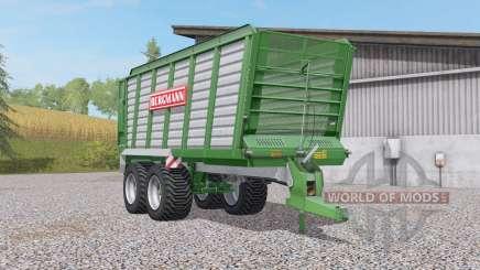 Bergmann HTW Ꝝ0 for Farming Simulator 2017