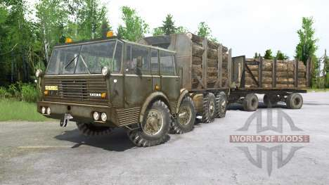 Tatra T813 for Spintires MudRunner