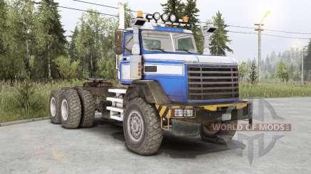 Royal BM-17 for Spin Tires