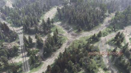 Forest Plains for Spin Tires