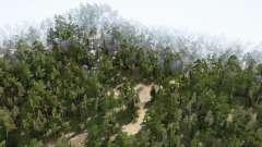 Forest After Rain for MudRunner