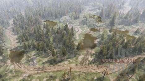Summer Forest v1.1 for Spin Tires