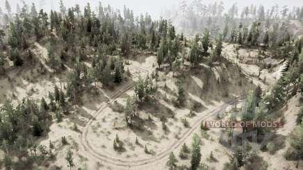 Forest Ձ for MudRunner