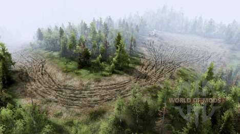 Beta for Spin Tires
